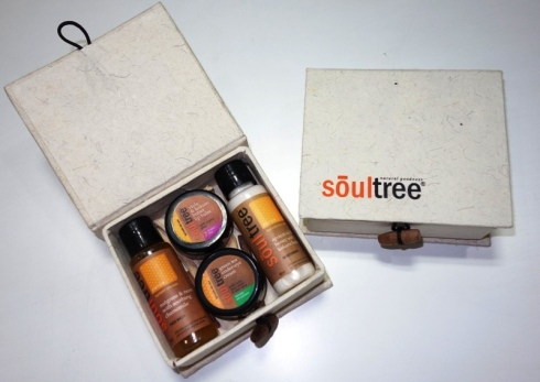 Soultree_Traveller_Kit
